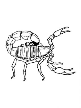 Scorpio-coloring-pages-4