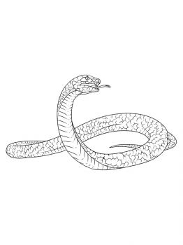 Snakes-coloring-pages-11