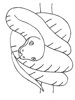 Snakes-coloring-pages-17