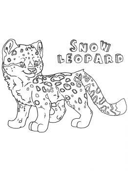 Snow-Leopard-coloring-pages-18