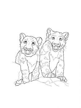 Snow-Leopard-coloring-pages-3