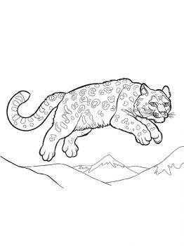 Snow-Leopard-coloring-pages-5