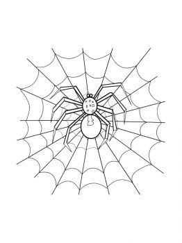 Spider-coloring-pages-13