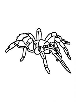 Spider-coloring-pages-16
