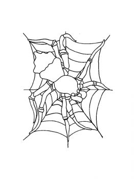 Spider-coloring-pages-23