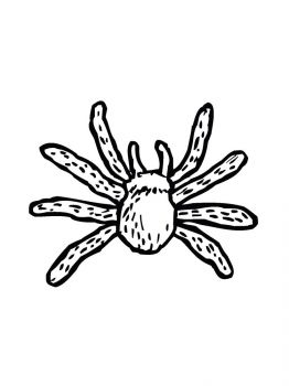 Spider-coloring-pages-25