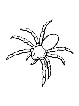 Spider-coloring-pages-26
