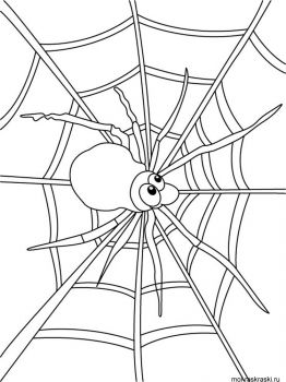 Spider-coloring-pages-30