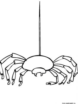 Spider-coloring-pages-32
