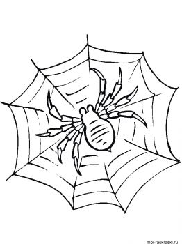 Spider-coloring-pages-43