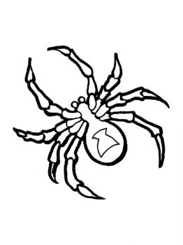 Spider-coloring-pages-5