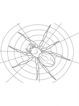 Spider-coloring-pages-7
