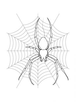 Spider-coloring-pages-8