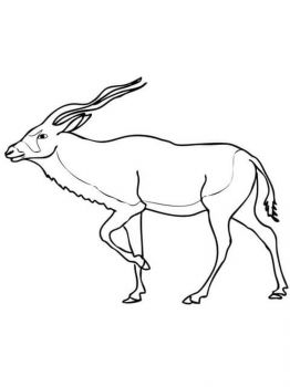 antelope-coloring-pages-10