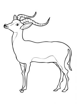 antelope-coloring-pages-4