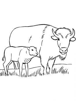 aurochs-coloring-pages-10