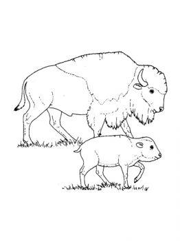 aurochs-coloring-pages-17