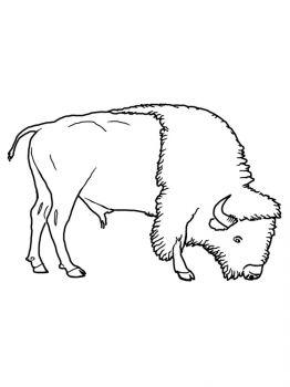 aurochs-coloring-pages-18