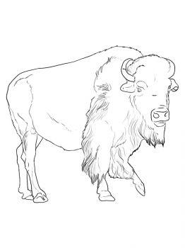 aurochs-coloring-pages-21