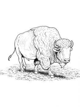 aurochs-coloring-pages-24