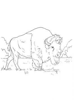 aurochs-coloring-pages-7