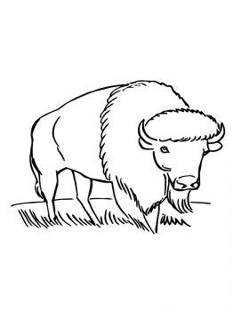 aurochs-coloring-pages-9