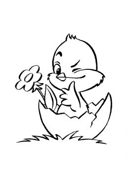 baby-chick-coloring-pages-6