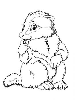 badger-coloring-pages-2