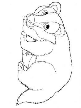 badger-coloring-pages-6