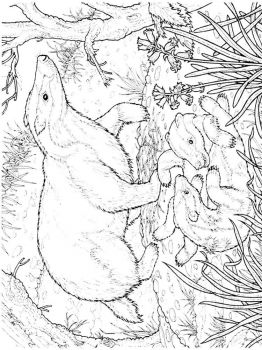 badger-coloring-pages-9