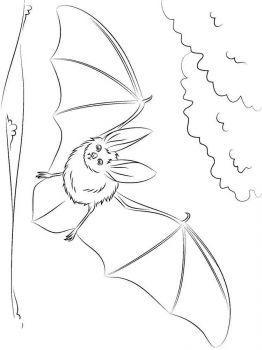 bat-coloring-pages-10
