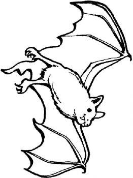 bat-coloring-pages-16
