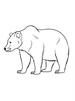 bear-coloring-pages-10