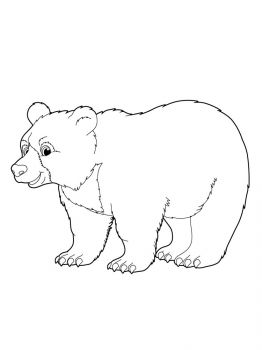 bear-coloring-pages-3