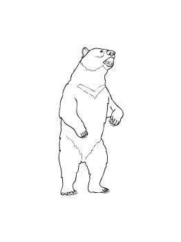 bear-coloring-pages-8