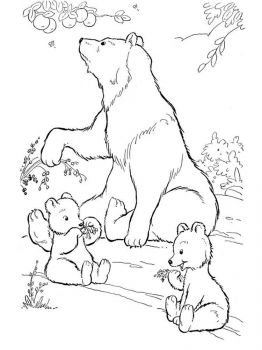 coloring-pages-animals-bear-14