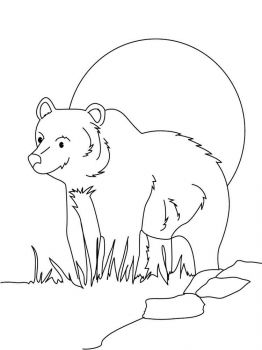 coloring-pages-animals-bear-9