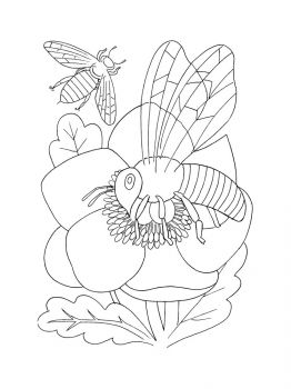bee-coloring-pages-13