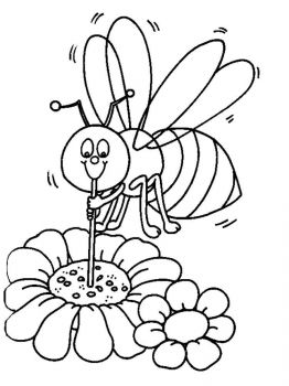 ausmalbilder bienen - malvorlagen kostenlos zum ausdrucken