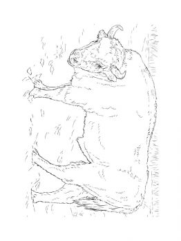 bison-coloring-pages-12