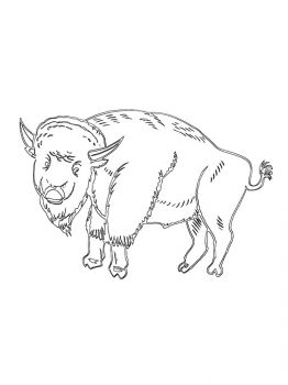 bison-coloring-pages-14