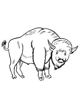 bison-coloring-pages-19