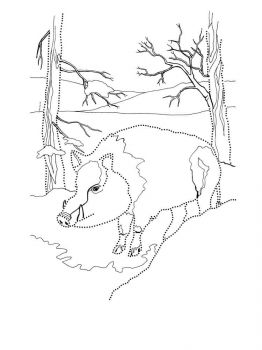 boar-coloring-pages-2