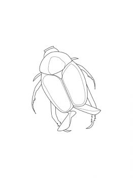 bug-coloring-pages-1