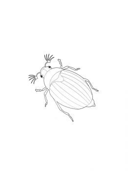 bug-coloring-pages-10