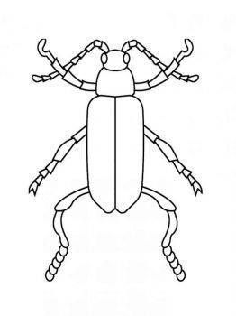 bug-coloring-pages-13