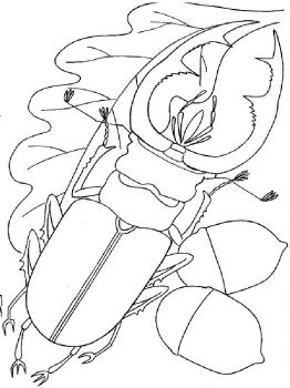 bug-coloring-pages-17