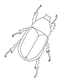 bug-coloring-pages-18
