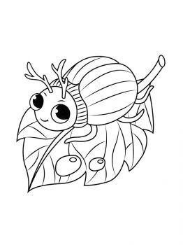 bug-coloring-pages-2