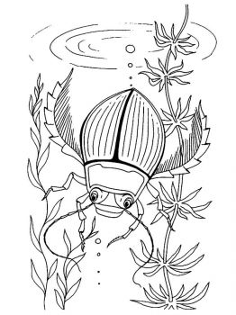 bug-coloring-pages-23